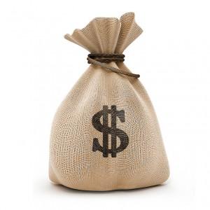 web-saco-dinheiro