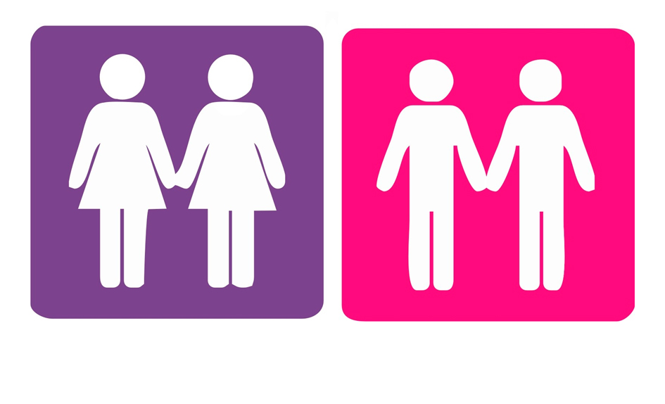 web-homossexualidade