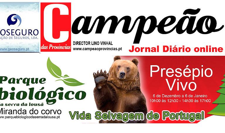 web33A-Campeao